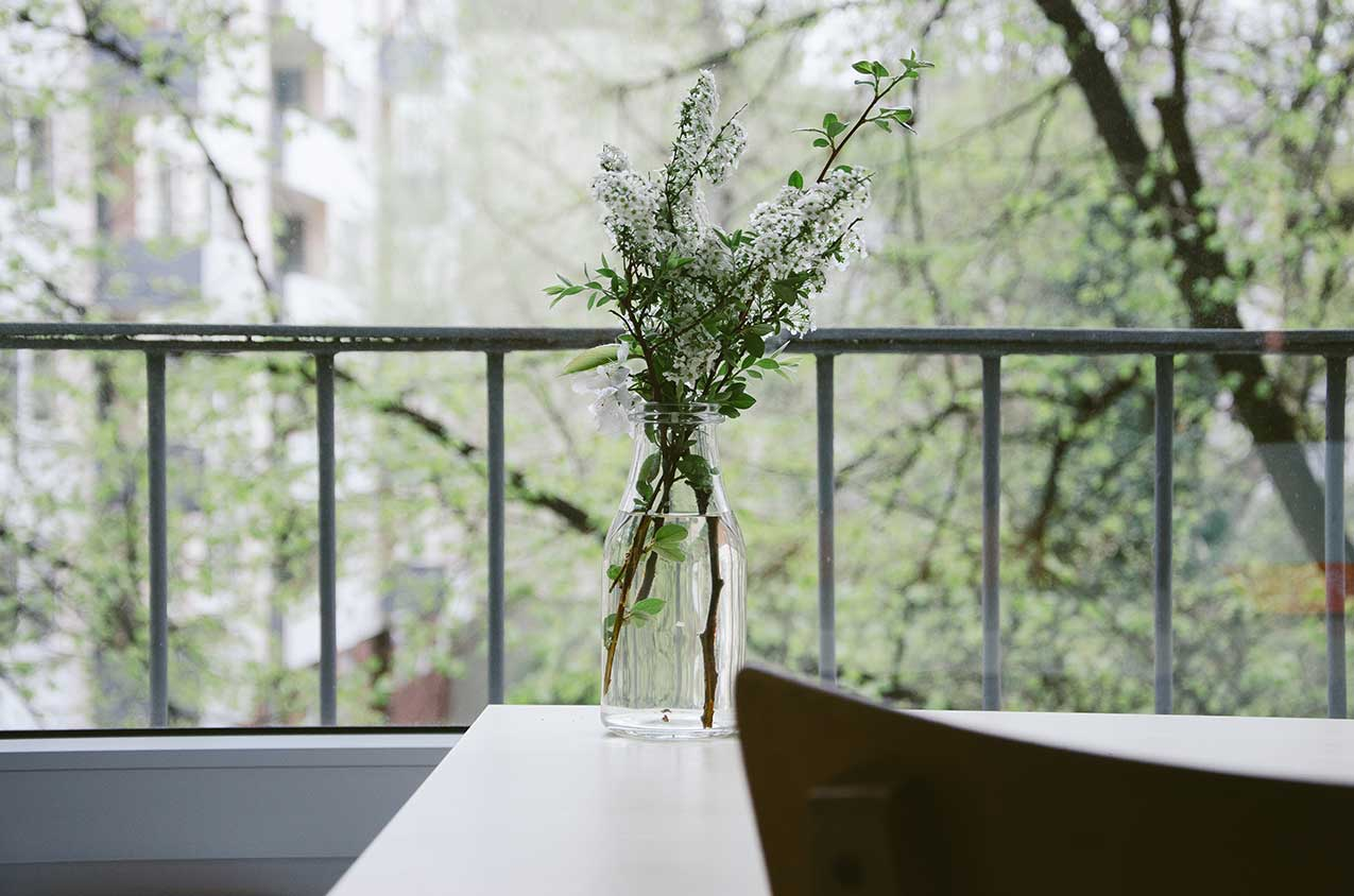 Interior stylist plants inside a home
