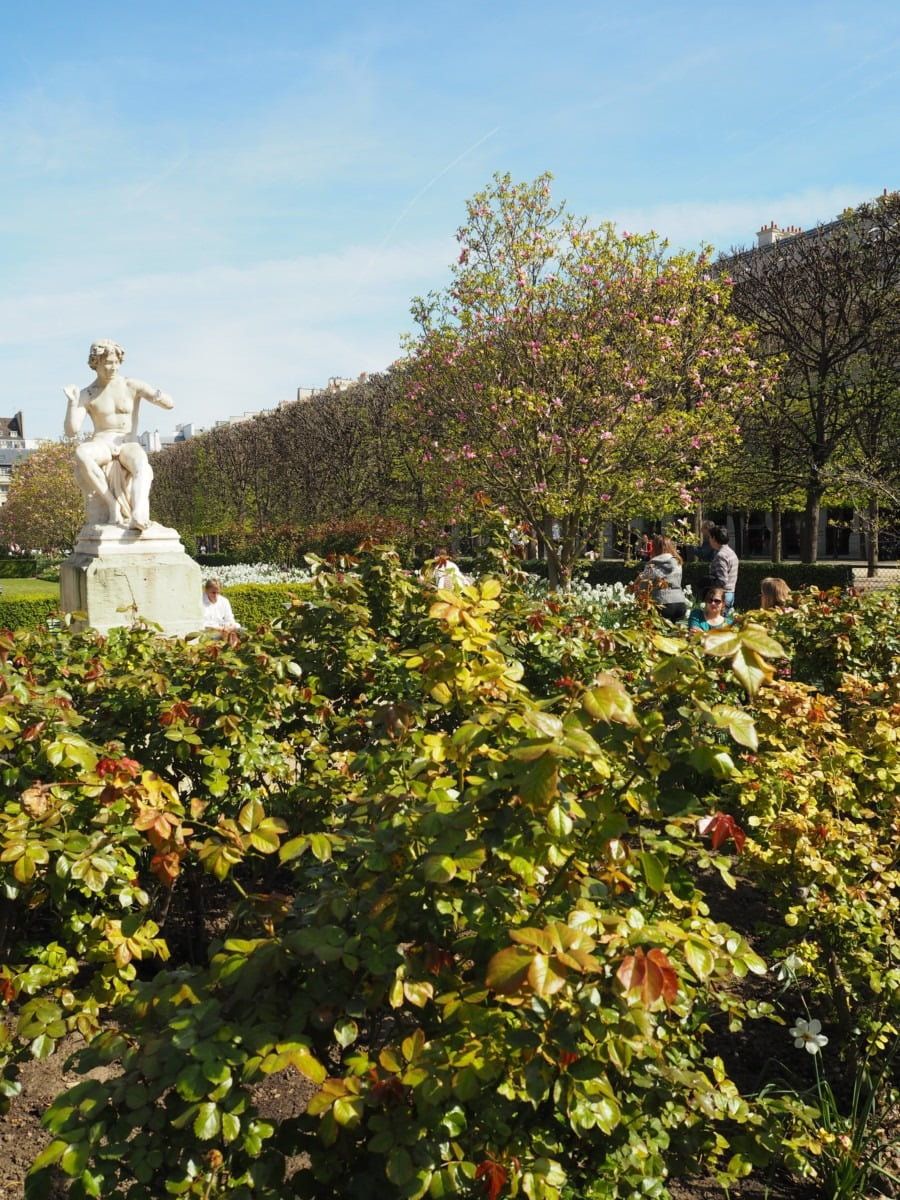 Beautiful garden in Paris