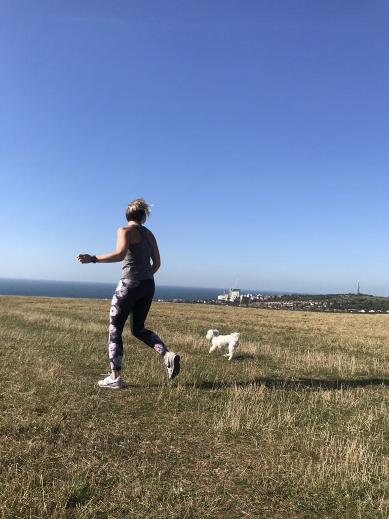 Tips on how keep your dogs happy and healthy this summer with advice on how to keep them cool, how to avoid sun stroke and other issues to look out for.