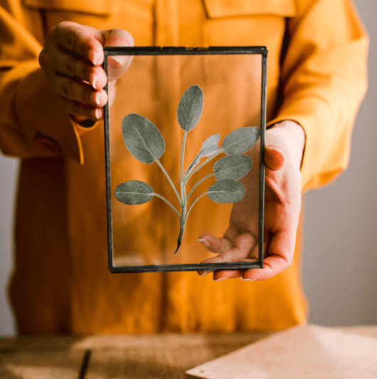 Discover ways to harness the power of herbs and how naturally beat the january blues with these inspiring ideas from interior stylist Maxine Brady